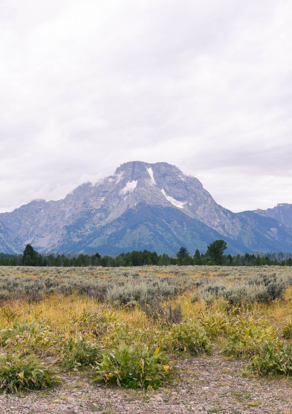 Photo Diary: Grand Teton National Park