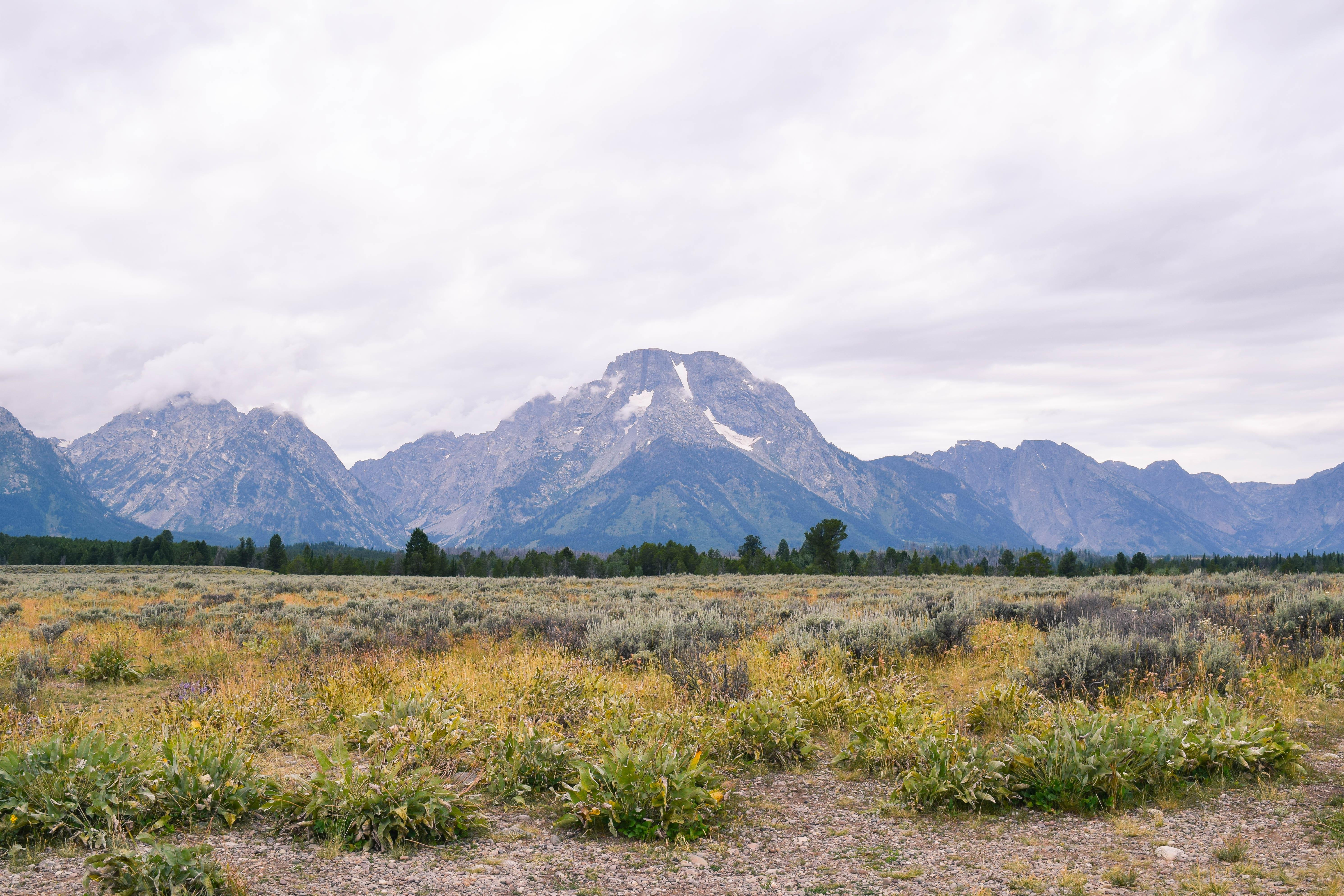 Photo Diary: Grand Teton National Park