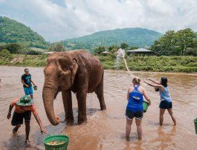 Chiang Mai jannaonajaunt.com