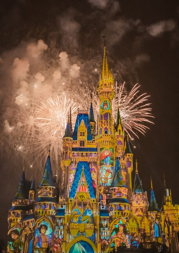 Four Days in Walt Disney World
