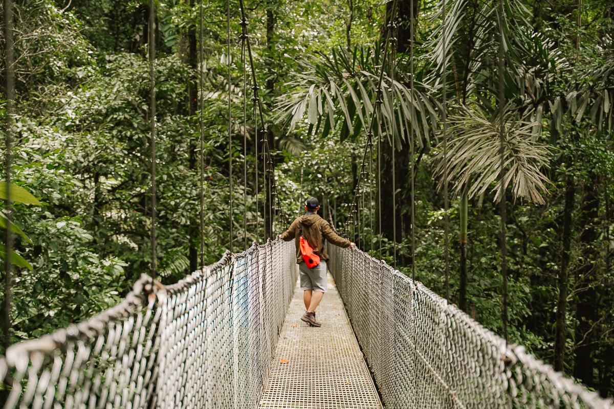 Mistico Hanging Bridge
